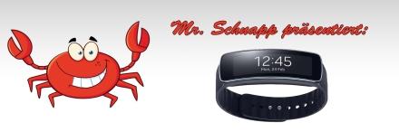 Schnapp präsentiert Ware Samsung Gear Fit